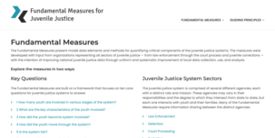 Fundamental Measures for Juvenile Justice homepage image